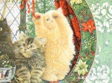画像5: CH136 Royal Doulton Lesley Anne Ivory  レズリー・アン・アイボリー Cats in the window ウィンター ピクチャープレート  (5)