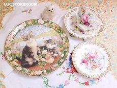 画像1: CH138 Royal Doulton Lesley Anne Ivory  レズリー・アン・アイボリー Cats in the window サマー ピクチャープレート  (1)