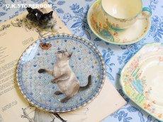 画像1: CH134 Aynsley Lesley Anne Ivory  レズリー・アン・アイボリー Meet My Kitten 8月 ピクチャープレート  (1)