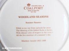 画像9: CP025 Coalport コールポート   ウッドランドシーズン 〜Summer Santer〜 (9)