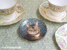 画像1: CH144 Royal Worcester Lesley Anne Ivory  レズリー・アン・アイボリー Ivory Cats ピンディッシュ  (1)