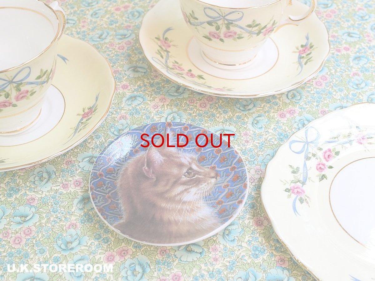 画像1: CH142 Royal Worcester Lesley Anne Ivory  レズリー・アン・アイボリー Ivory Cats ピンディッシュ  (1)