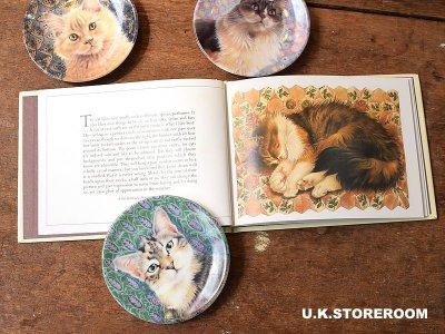 画像3: CH155 Lesley Anne Ivory  レズリー・アン・アイボリー Post Cats