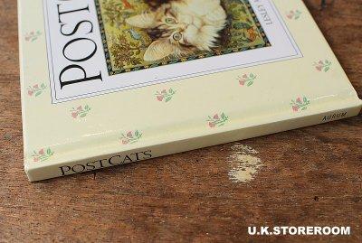 画像2: CH155 Lesley Anne Ivory  レズリー・アン・アイボリー Post Cats