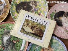 画像1: CH155 Lesley Anne Ivory  レズリー・アン・アイボリー Post Cats  (1)