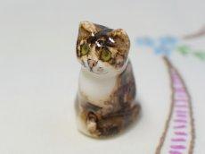 画像8: CH158 Winstanley Cat ウィンスタンレイ・キャット ブラウンタビー (8)