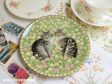 画像1: CH177 Aynsley Lesley Anne Ivory  レズリー・アン・アイボリー Meet My Kitten 5月 ピクチャープレート  (1)