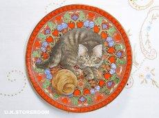 画像2: CH180 Aynsley Lesley Anne Ivory  レズリー・アン・アイボリー Meet My Kitten 2月 ピクチャープレート  (2)