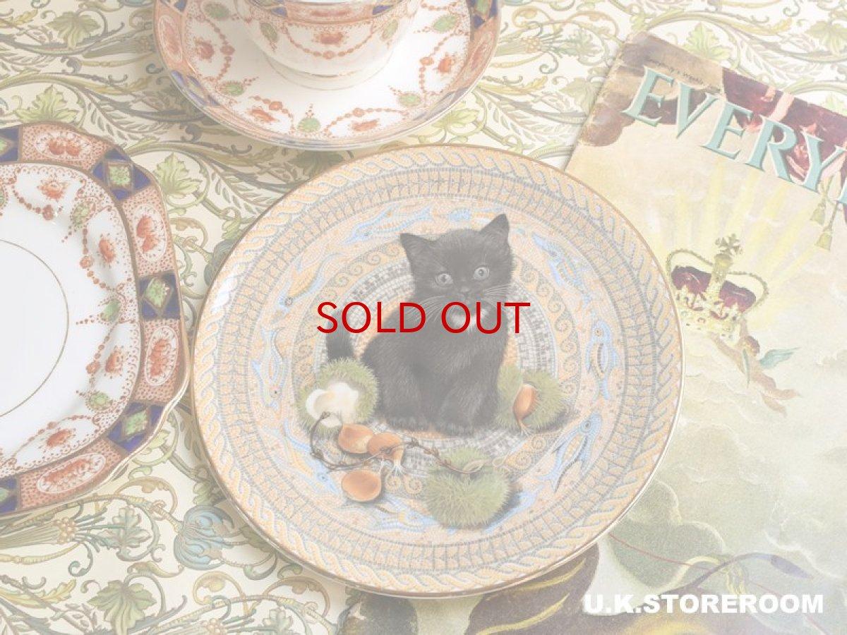 画像1: CH173 Aynsley Lesley Anne Ivory  レズリー・アン・アイボリー Meet My Kitten 9月 ピクチャープレート  (1)