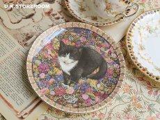 画像1: CH172 Aynsley Lesley Anne Ivory  レズリー・アン・アイボリー Meet My Kitten 10月 ピクチャープレート  (1)