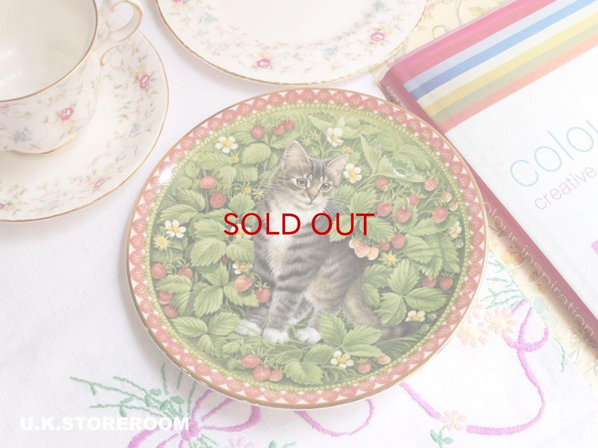 画像1: CH175 Aynsley Lesley Anne Ivory  レズリー・アン・アイボリー Meet My Kitten 7月 ピクチャープレート  (1)