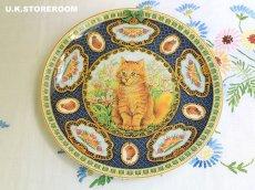 画像2: CH185 Coalport  Lesley Anne Ivory  レズリー・アン・アイボリー Kitten of the Week -Tuesday's Kitten- ピクチャープレート  (2)