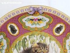 画像4: CH184 Coalport  Lesley Anne Ivory  レズリー・アン・アイボリー Kitten of the Week -Wednesday's Kitten- ピクチャープレート  (4)