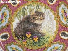 画像3: CH184 Coalport  Lesley Anne Ivory  レズリー・アン・アイボリー Kitten of the Week -Wednesday's Kitten- ピクチャープレート  (3)