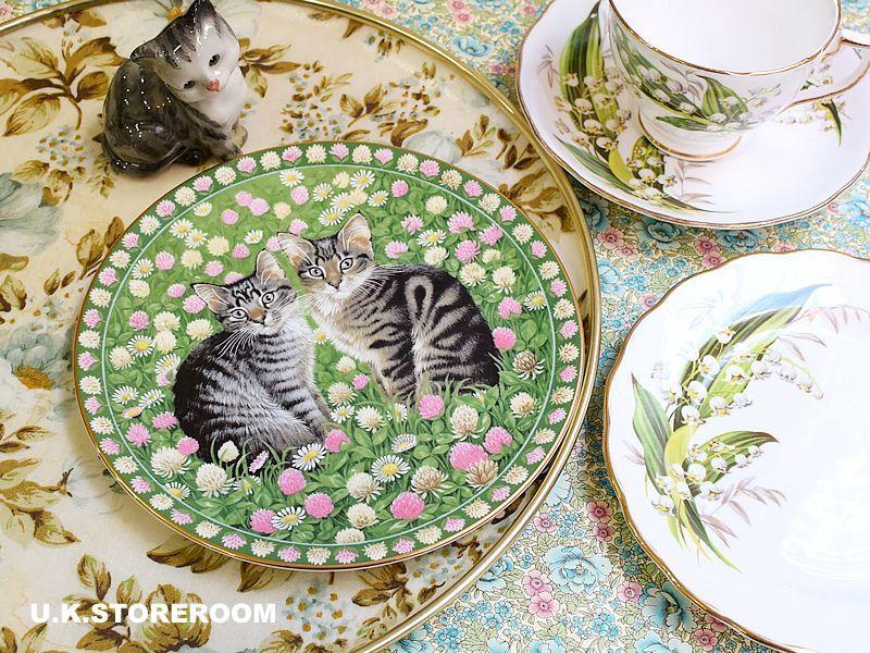 画像1: CH132 Aynsley Lesley Anne Ivory  レズリー・アン・アイボリー Meet My Kitten 5月 ピクチャープレート  (1)