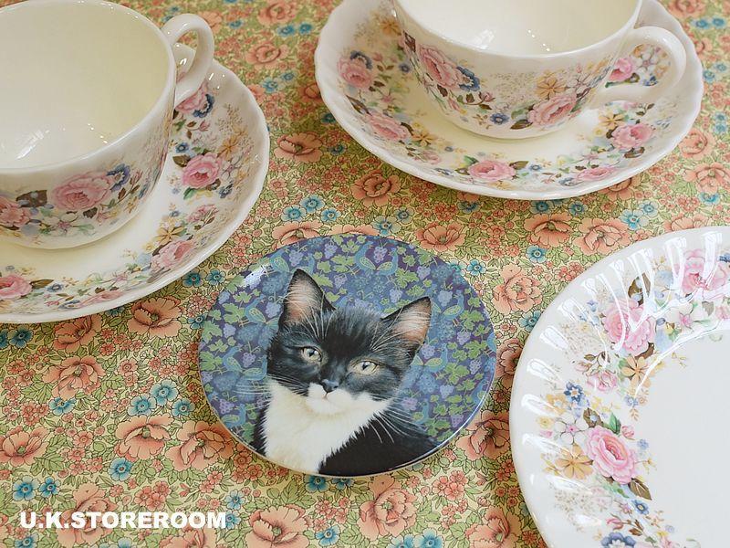 画像1: CH141 Royal Worcester Lesley Anne Ivory  レズリー・アン・アイボリー Ivory Cats ピンディッシュ  (1)